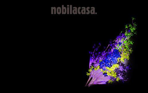 Buchet flori WILD FLOWERS la 8 lei