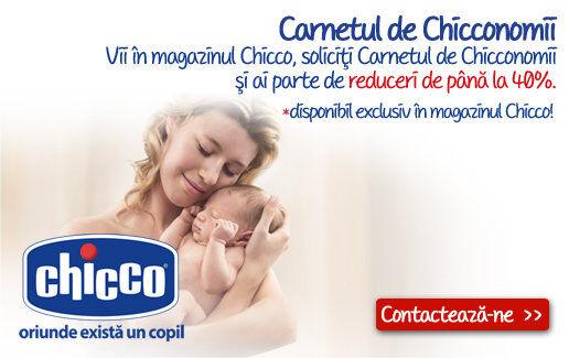 Carnetul de Chicconomii