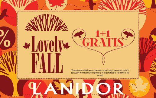 Lovely FALL 1+1 GRATIS